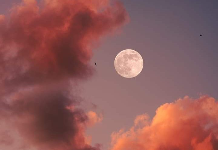 Full Moon in Virgo by Sujata Nandy